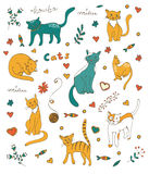 Cute colorful set of hand drawn cats with twigs flowers and leaves Stock Photography