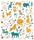Cute colorful set of hand drawn cats with twigs flowers and leaves Royalty Free Stock Photo