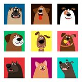 Cute comic puppy heads. Dogs faces. Cute comic puppy heads and fun dog portrait set vector illustration Royalty Free Stock Image