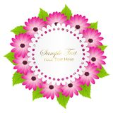 Cute Congratulation Postcard with Dahlia Flower Royalty Free Stock Images