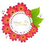 Cute Congratulation Postcard with Red Flower Stock Photos