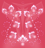 Cute coral background Royalty Free Stock Image