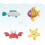 Cute coral reef fishes vector illustration icons set.  Vector isolated cartoon gray fish, striped fish, crab and starfish . Cute coral reef fishes vector Royalty Free Stock Photo