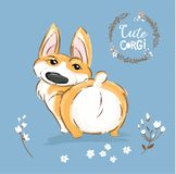 Cute Corgi Dog Puppy Back Tail Vector Illustration. Pretty Fox Pet Character Outdoor Poster. Little Happy Brown Doggy stock illustration