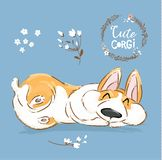 Cute Corgi Dog Puppy Sleep Vector Banner. Welsh Short Fox Pet Character Rest Pose Poster. Little Cheerful Brown Doggy. Series in Flower on Blue Background Flat vector illustration