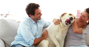 Cute couple calling their labrador dog to the couch. At home in living room stock footage