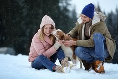 Cute couple with dog near forest. Winter vacation stock images