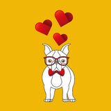 Cute couple dog pet with glasses bow heart background Royalty Free Stock Photo