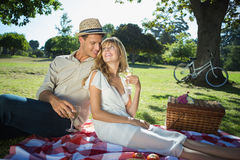 Cute couple drinking white wine on a picnic smiling at each other Stock Photo