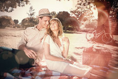 Cute couple drinking white wine on a picnic smiling at each other Royalty Free Stock Photos