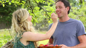 Cute couple eating apples together in a garden stock footage