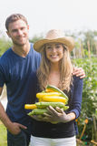 Cute couple gardening on sunny day Stock Photos