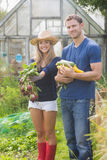 Cute couple gardening on sunny day Royalty Free Stock Images