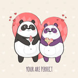 Cute couple of pandas in love Stock Images
