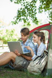 Cute couple sitting in their tent looking at laptop Stock Photography