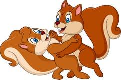 Cute Couple Squirrel Dancing Stock Photo