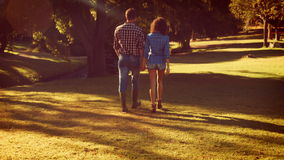 Cute couple walking in the park. On a sunny day stock video
