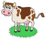 Cute cow Stock Photo