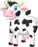 Cute cow cartoon Stock Photo