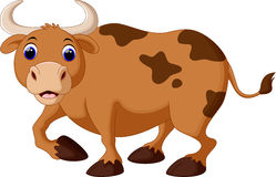 Cute cow cartoon Stock Images