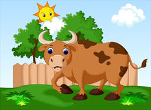Cute cow cartoon Royalty Free Stock Photos