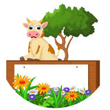 Cute cow cartoon sitting with blank sign Royalty Free Stock Photos