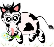 Cute cow eating grass Stock Photo