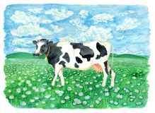 Cute cow on the field with flowers against sky with clouds. Vintage rural background with summer landscape, watercolor illustration with design graphic elements Stock Images