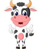 Cute cow Stock Photos