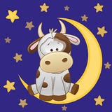 Cute Cow on the moon. Cute Cow is sitting on the moon Stock Photos