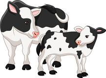 Cute cow mother with baby calf Royalty Free Stock Photo