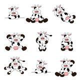 Cute Cow Set