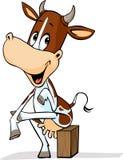 Cute cow sitting leg over leg - funny vector cartoon Stock Image