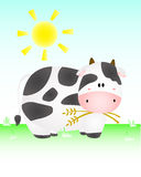 Cute Cow In The sun Royalty Free Stock Photo