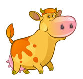 Cute cow. On a white background Royalty Free Stock Image