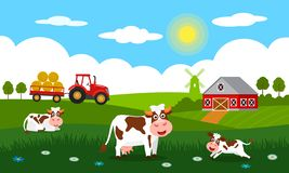 Cute cows and funny calves graze on green grass against the backdrop of a rural summer landscape, farm, mill and red tractor with. A trailer. Flat vector royalty free illustration