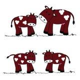 Cute cows Stock Photos