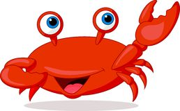 Cute crab cartoon Royalty Free Stock Photos