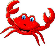 Cute crab cartoon Royalty Free Stock Photography