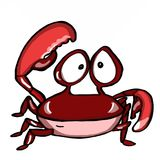 Cute crab. And speaking ocean sea wildlife Royalty Free Stock Photos