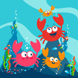 Crabs and fish underwater. Crabs and colorful fish playing happily underwater Royalty Free Stock Photos