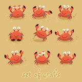 Cute crabs, funny characters. Summer beach. Vector Royalty Free Stock Photography