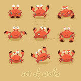 Cute crabs, funny characters. Summer beach. Vector Stock Photography
