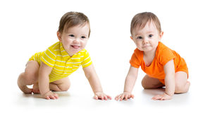 Cute crawling babies boys isolated on white. Two cute babies boys crawling on floor. Toddlers isolated on white background stock photography