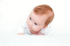 Cute crawling baby Stock Image