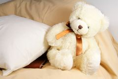 Cute creamy bear. Cute creamy teddy bear sitting near the pillow with diary under it Royalty Free Stock Photos