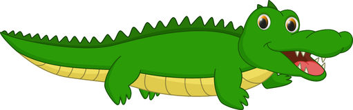 Cute crocodile cartoon. Illustration of cute crocodile cartoon on white vector illustration