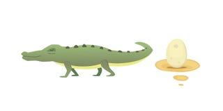 Cute Crocodile set. Aligator vector cartoon illustration Royalty Free Stock Image