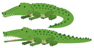 Cute crocodiles on white background. Illustration Stock Photography