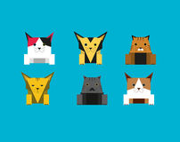 Cute Cube Cat Royalty Free Stock Photography